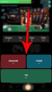 jenis-taruhan-dragon-tiger